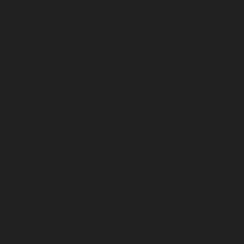 Magnat-pictos2017_driver-longthrow.jpg